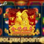 สล็อตไก่ทอง Slot Golden Rooster